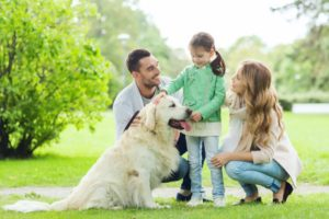 Pet Safety Tips for Parents with Young Children